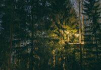 Aicina uz gardēžu vakariņām koku galotnēs