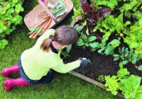 Laimes un miera atslēga – dārzkopība