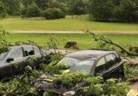 BTA: Stiprā krusa sabojājusi daudzus auto, ēkas cietušas no krītošiem kokiem