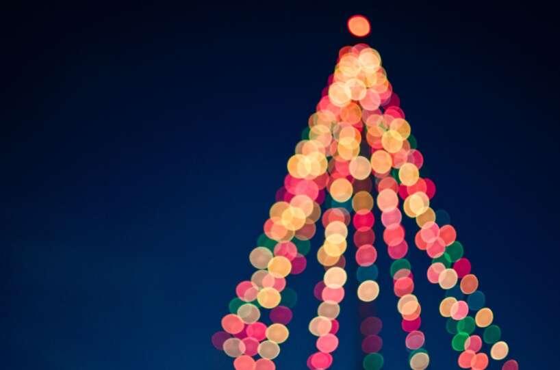 Egle/ Ziemassvētki